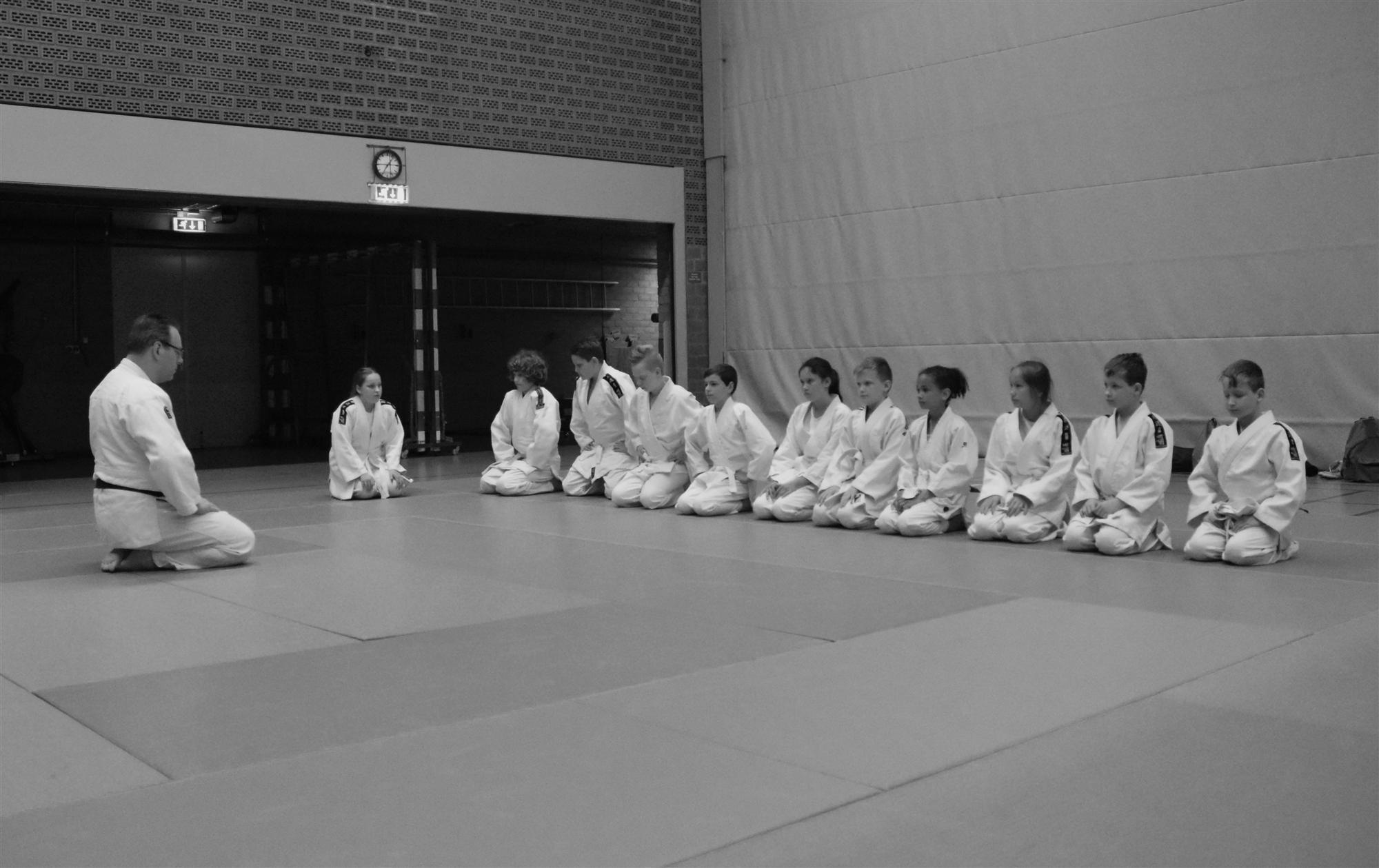 http://judoclubbrunssum.nl/iw-courses/m1/