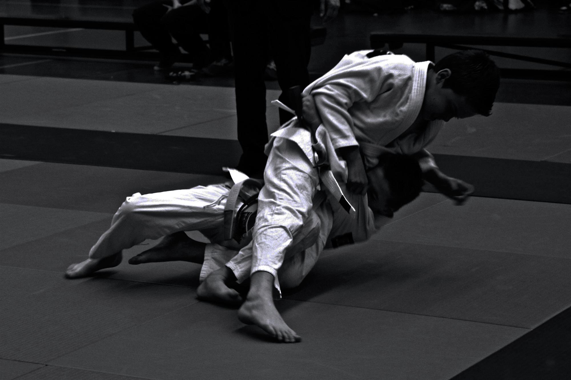 http://judoclubbrunssum.nl/iw-courses/techniek-trainingen/