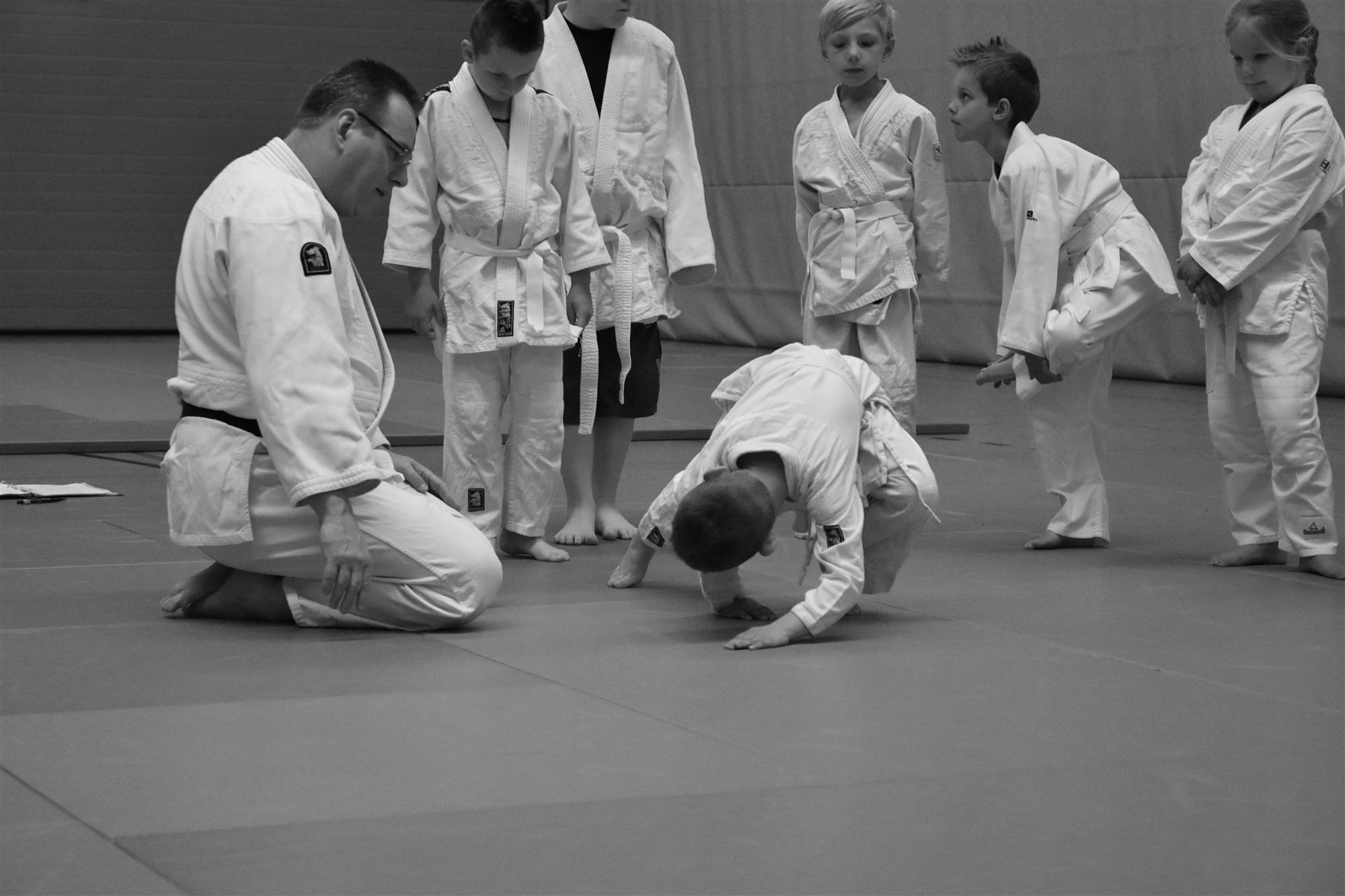 http://judoclubbrunssum.nl/iw-courses/o1/